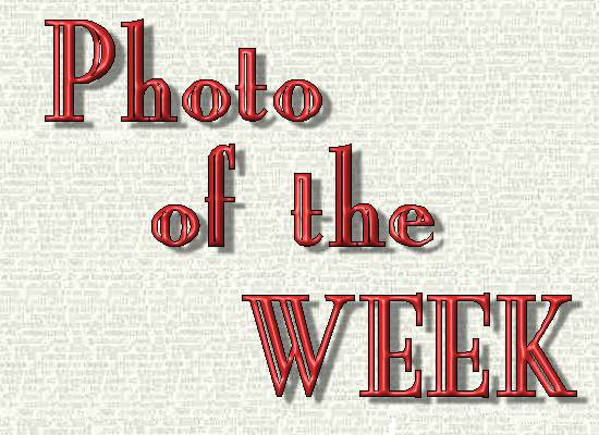 Photo of the Week logo