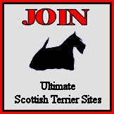 Top Scottie List logo